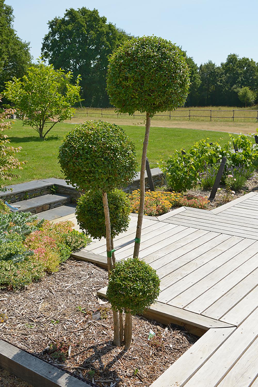 planchenault paysage plantation d 39 arbre et arbuste dans. Black Bedroom Furniture Sets. Home Design Ideas