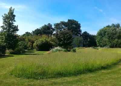 tonte-pelouse